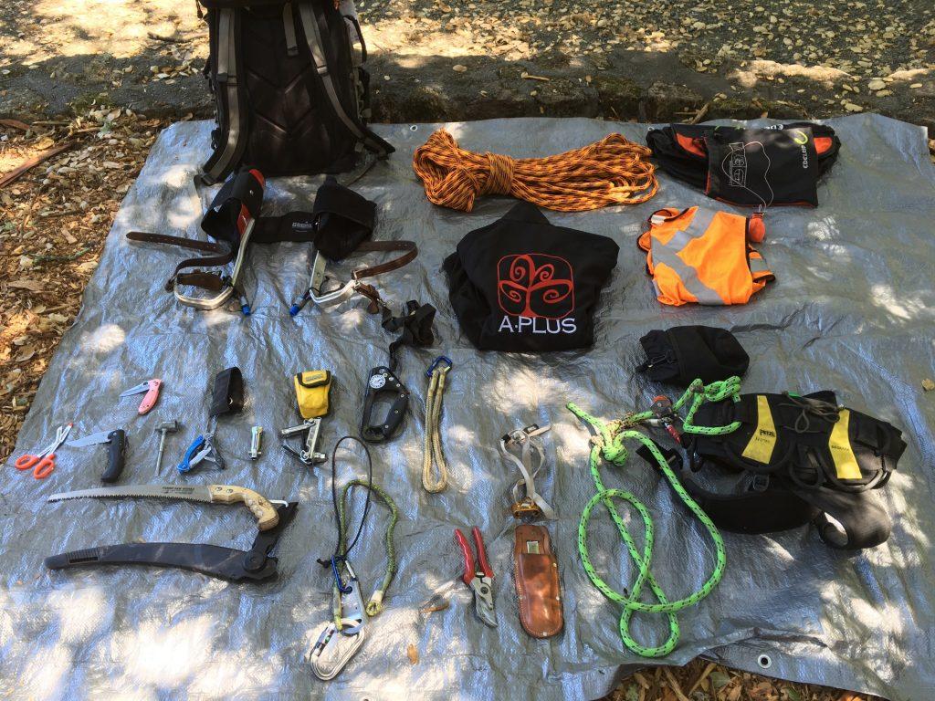 Tree Climber Gear