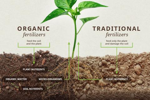 soilcomparison