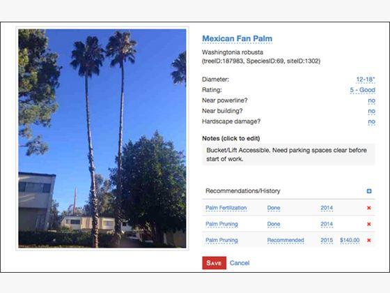 Tree Management App