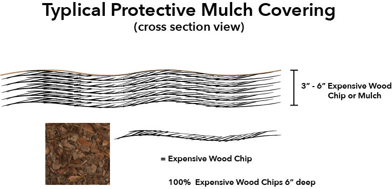 Typical wood chip covering strategy