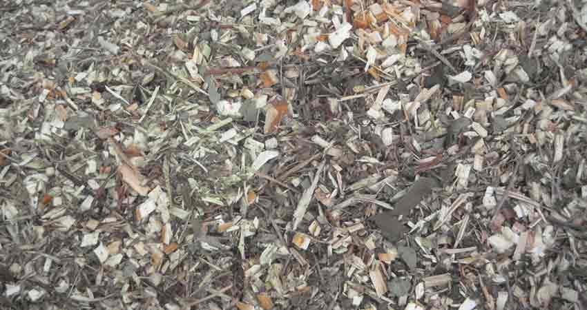 Week 2 arbor-mulch